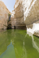gorges in the Negev desert