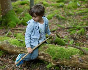 Garçon en forêt
