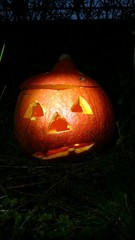 Halloween kürbiskopf Dunkelheit