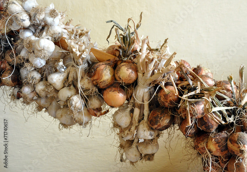 canvas print picture Detailed view of bio garlic and onions