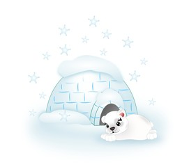 Polar bear with igloo