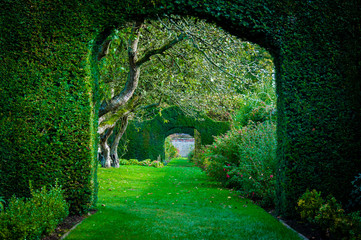 Green plant arches in english countryside garden © stanciuc
