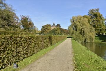 La haie qui longe la roseraie au parc d'Enghien