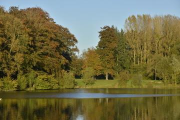 Végétation automnale à l'étang du Miroir au parc d'Enghien