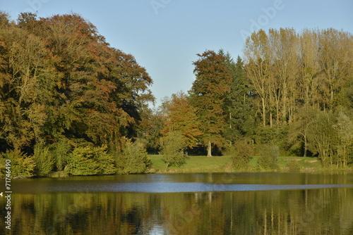 canvas print picture Végétation automnale à l'étang du Miroir au parc d'Enghien