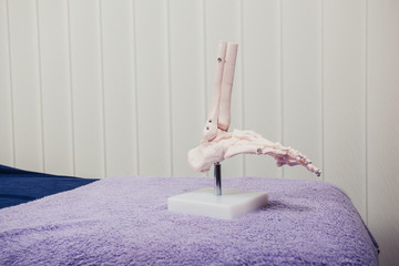 Model of human foot on therapy bed