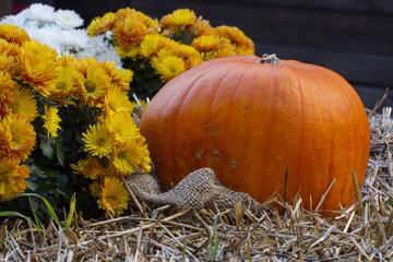 Composizione d'autunno