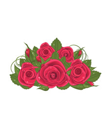 Bouquet red roses isolated on white background