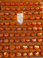 Selection of painted pumpkins.