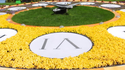 closeup real flower clock in Kiev, panorama from bottom up