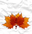 Autumnal maple leaves, crumpled paper texture