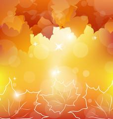 Autumn orange background with maple leaves
