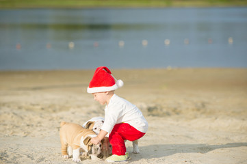 little Santa plays on the river bank with puppies