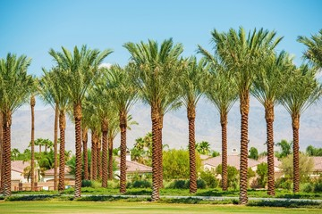 Indian Wells California USA