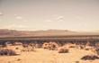Leinwanddruck Bild - Southern California Desert
