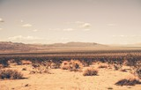 Southern California Desert - 71754662