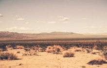 Sur Desierto de California