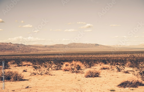 canvas print picture Southern California Desert