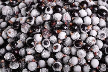 heap of frozen black currant
