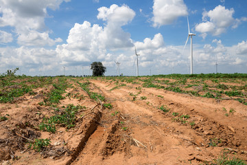 Wind Turbine for alternative energy on background sky on Cassava