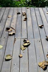 dry leaves on wooden floor