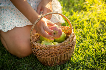 woman with basket full of apples sitting on grass