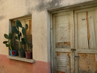 Kaktus auf der Fensterbank in der Altstadt von Alacati bei Cesme