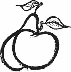 doodle apple and pear, charcoal line art