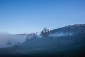 fog landscape with sunbeam, twilight