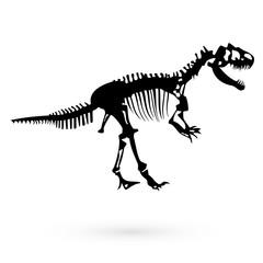 The skeleton of a dinosaur. Raster