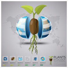 Worldwide Plant Ecology And Environment Infographic