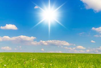 Sunshine Scene Dream Wallpaper