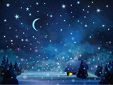 Fototapety Vector winter night  landscape with house in forest.