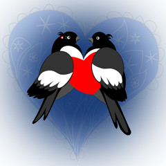 A pair of lovers bullfinches with heart on a blue background. Va