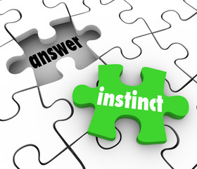 Instinct Puzzle Piece Find Answer Solve Puzzle Gut Feeling Solut