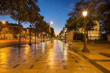 Avenue des Champs-Élysées PARIS