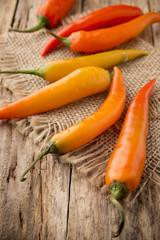Chili pepper.
