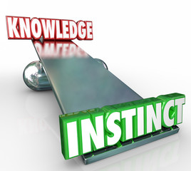 Instinct Vs Knowledge 3d Words See Saw Balance Gut Feeling