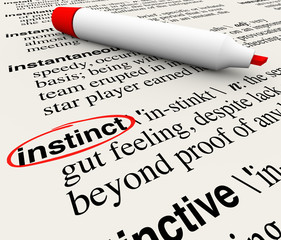 Instinct Dictionary Definition Word Circled Meaning