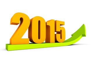growing up 2015 year success arrow