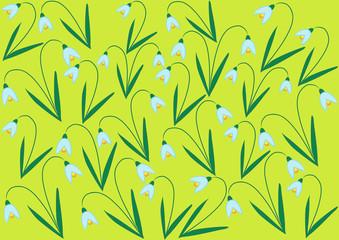 color vector snowdrop flowers