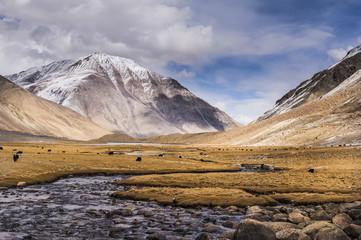 Beautiful Landscape in north india