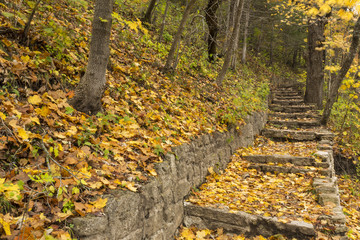Stone Step Trail In Breezy Autumn