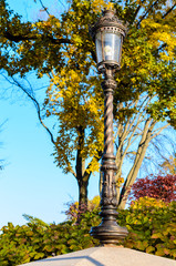 lamp post in autumn garden