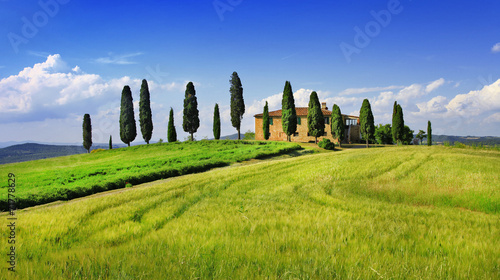 beautiful  landscapes of Toscana. Italy - 71778629