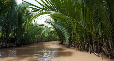 Mekong delta, Can Tho, Vietnam