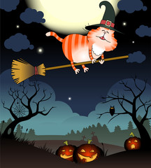 Illustration of funny cat flies on a broomstick