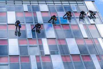 six young men are cleaning windows on high glassy building