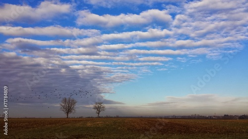 canvas print picture Herbstliche Landschaft