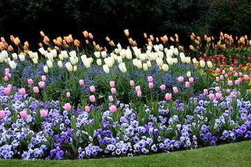 London Hyde Park gardens